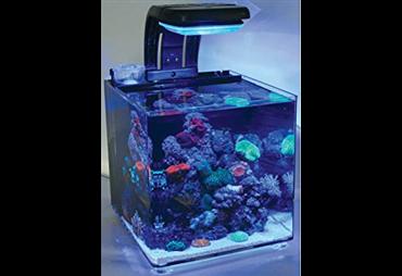 MicroHabitat 30l vč. osvětl., filtr. a přísl.