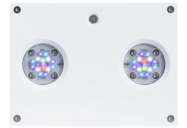 AI Hydra 32HD - akvarijní osvětlení 32-LED, bílá (~90W)