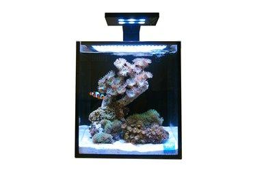 Nuvo Fusion 10 + Skkye LED Clamp 18W/10K-450nm, mořský set (38 litrů/černá)