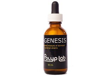 PolypLab Genesis Bacteria (50ml)